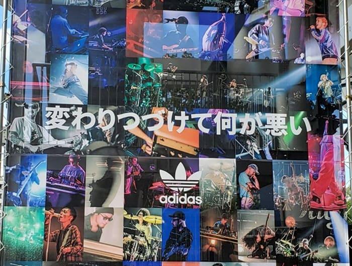 サチモス 横浜 スタジアム