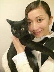 持田香織の猫